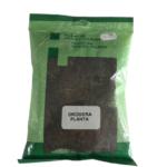drosera_planta-removebg-preview.png